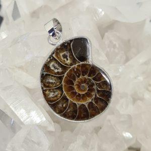 Ammonit Anhänger