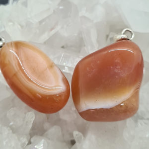 Aprikosen Achat